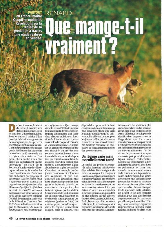 Quemangeun renard1